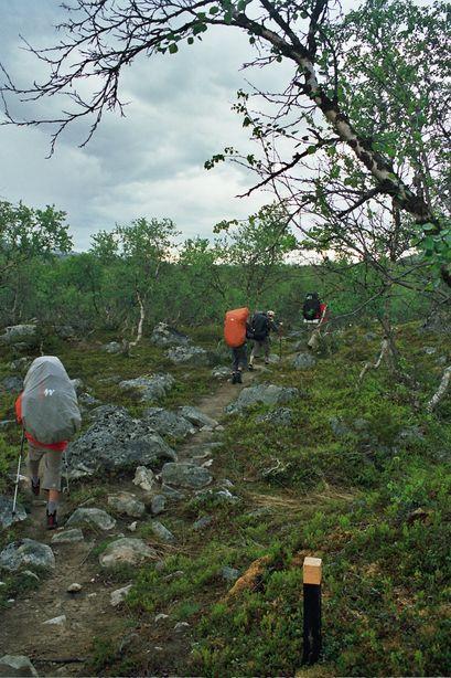 Vous regardez les images de l'article: Trekking estival en laponie - jour 1